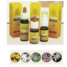 RESOURCE REMEDY GUN GOCCE 10ML Fiori di bach