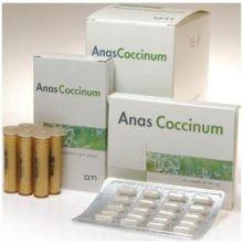 ANAS COCCINUM H 17 BLISTER 20 CAPSULE Capsule