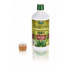 ALOE VERA MIRTILLO 1 LITRO Aloe vera da bere