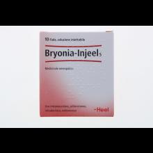 BRYONIA INJEEL 10 FIALE 1,1ML HEEL Fiale