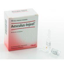 Aesculus Injeel heel 10 fiale 1,1ml Fiale