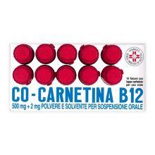 Cocarnetina B12 10 Flaconcini orali 10ml Altri disturbi